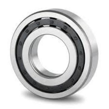 85 mm x 180 mm x 41 mm  Loyal NF317 cylindrical roller bearings